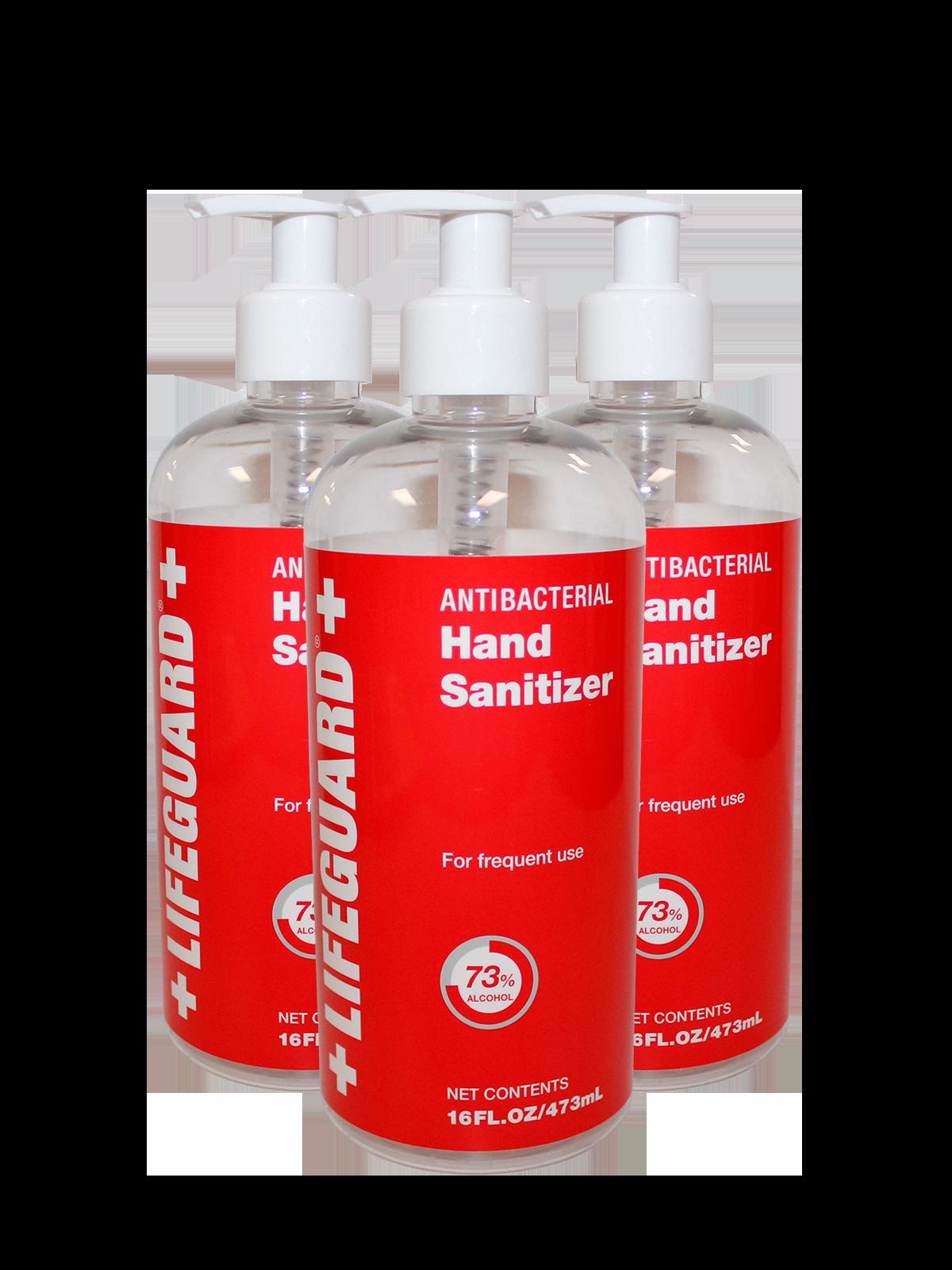 Hand Sanitizer 16 oz. - 24 bottles per case